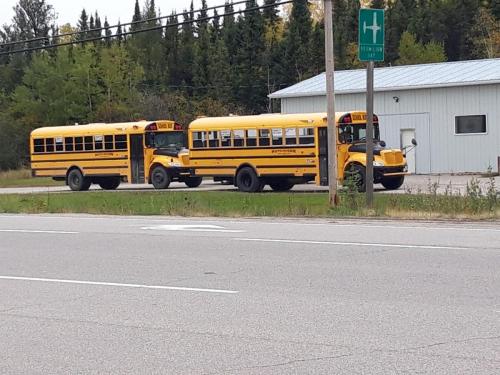 Skolebusser